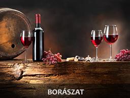 09_boraszat